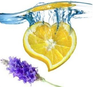 Edible Massage Oil Lavender Lemon